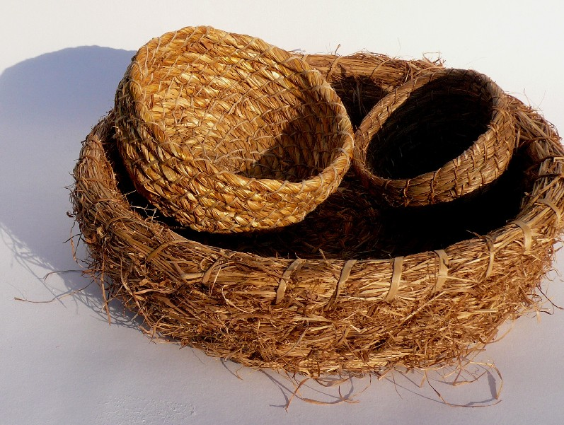 basketmaking evening class in Sussex