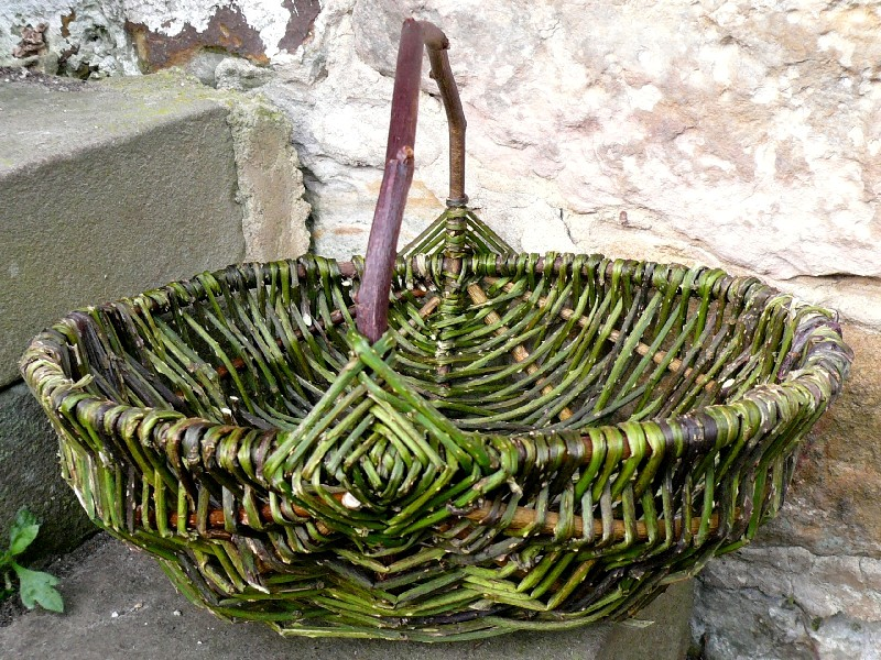 brambles & wild rose basket