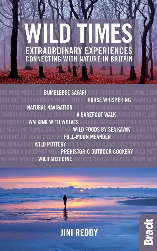 Wild Times Bradt Travel Guide