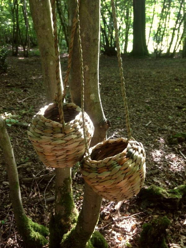 sélection premium 84f6c c0ce1 Native Hands: Rush Foraging Baskets Course in Sussex