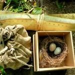 bark basket, fire kit, bird's nest