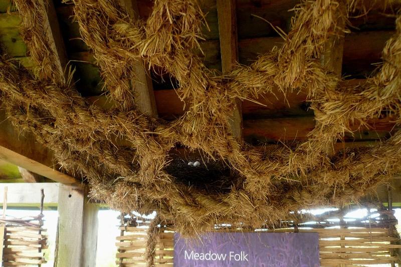wakehurst nest in netting