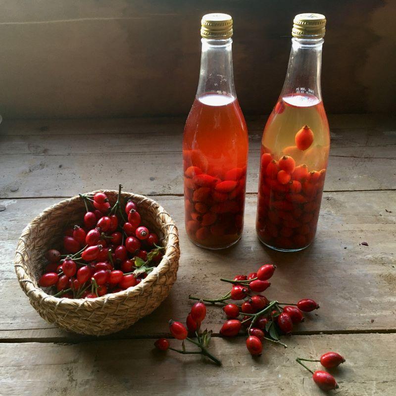 rose hip vinegar recipe