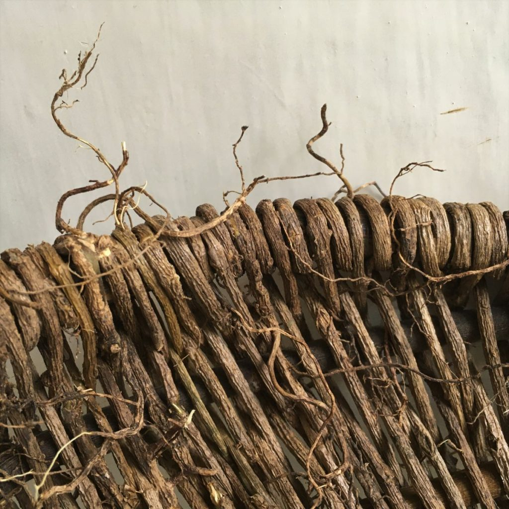 ivy basket workshop sussex